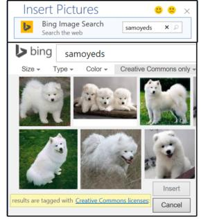 04b use images from your online internet sources
