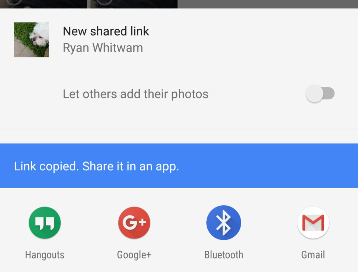 Google Photos sharing links