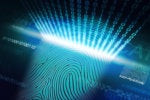 N-dimensional behavioral biometrics: a viable solution for digital fraud?