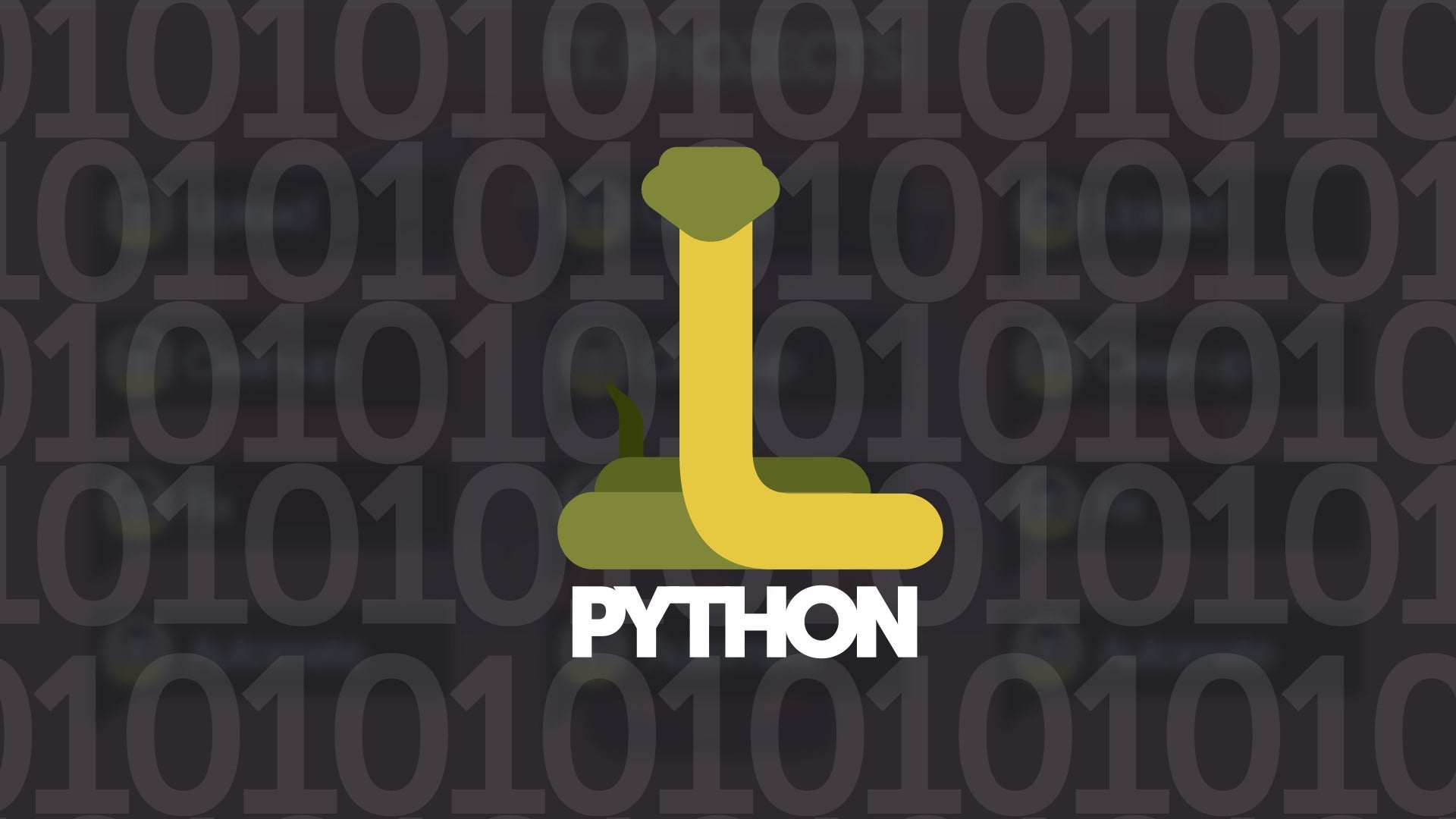what is the python programming language everything you need to know