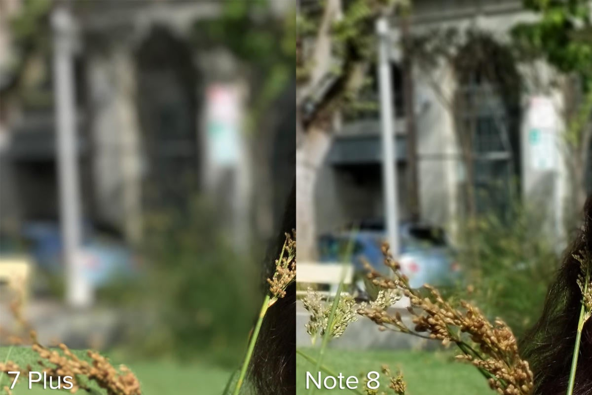 Apple iPhone 7 Plus Portrait Mode vs Samsung Galaxy Note 8 Live Focus example 3 punch in