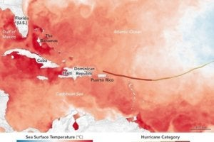 The hurricane preparedness guide for businesses
