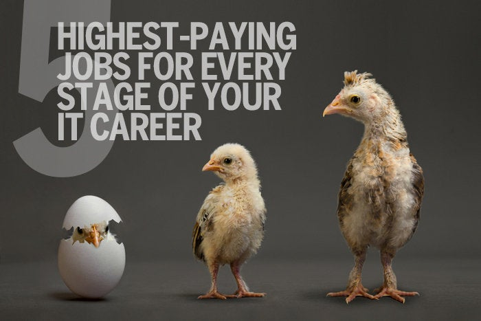 5 highest-paying jobs for every stage of your IT career