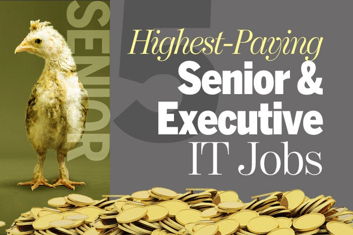 5 highest-paying senior and executive IT jobs