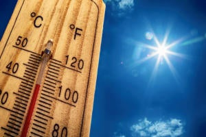 4 hot project management trends — and 4 going cold