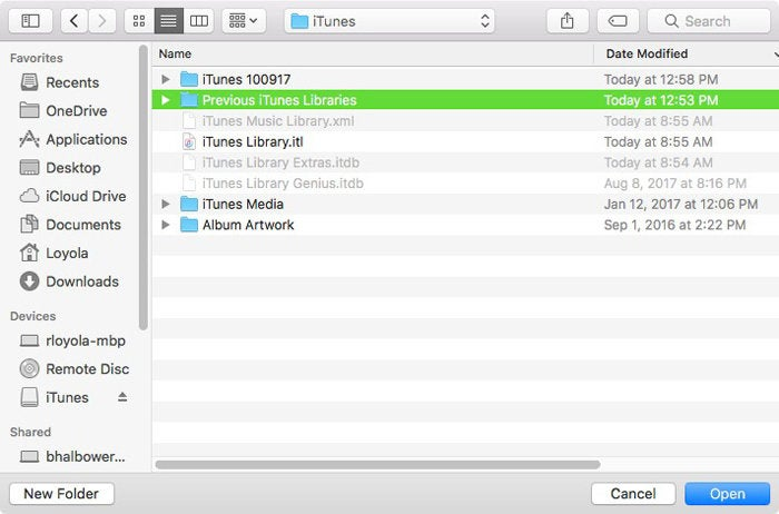 previous itunes libraries
