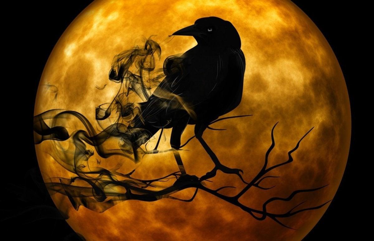 spooky halloween raven