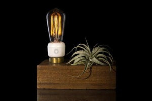 emberlight product in lamp