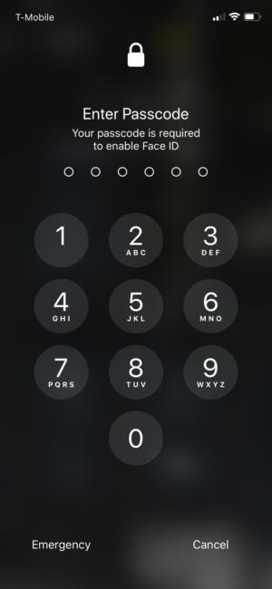 iphone x face id passcode