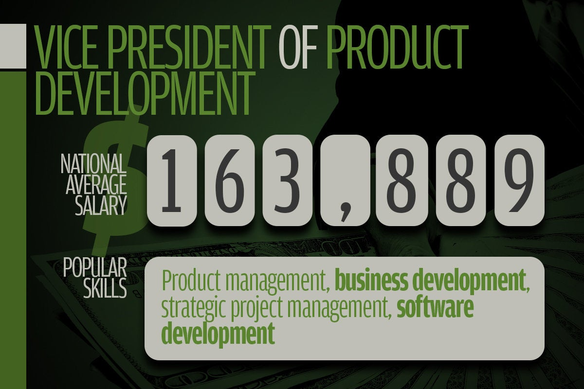 14 vice president of product development