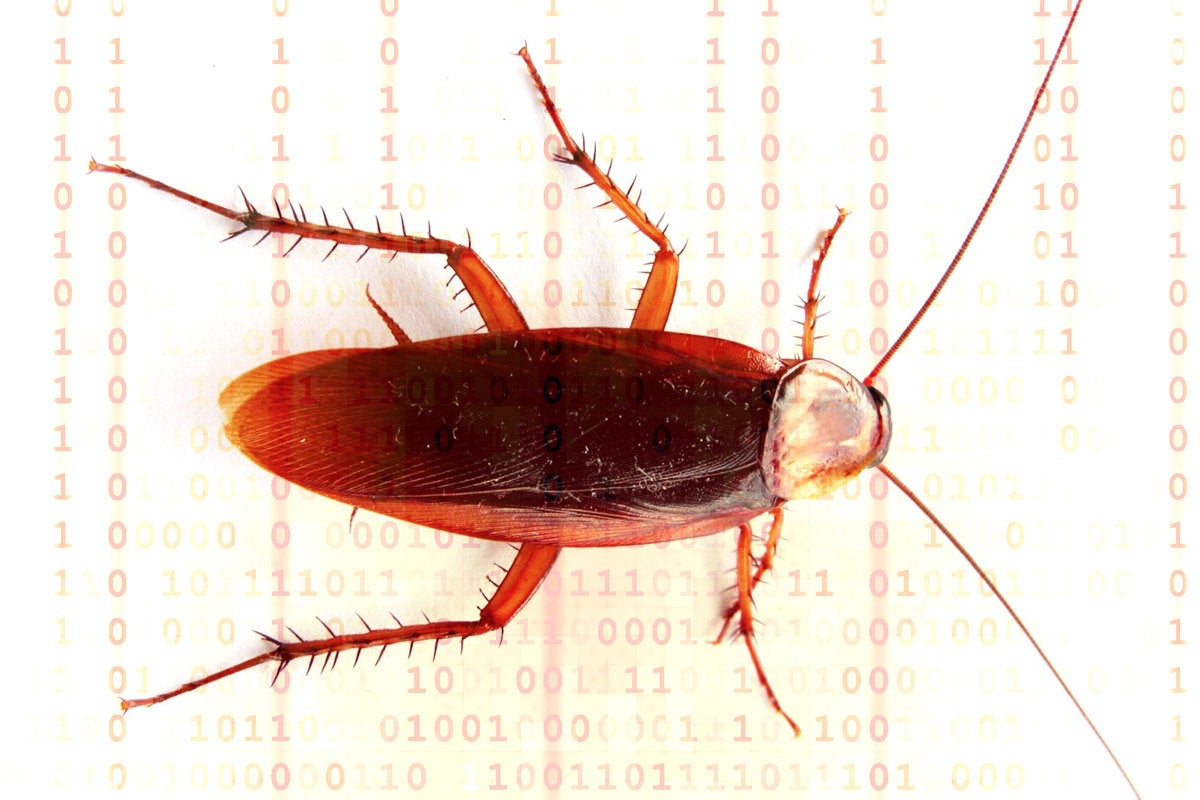 Zero Day Initiative bug report, Microsoft bugs