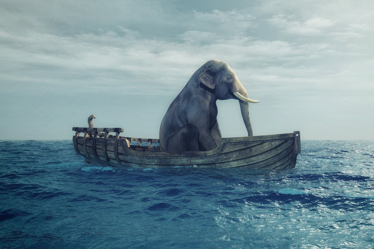 big data elephant analytics risk predictions vulnerable
