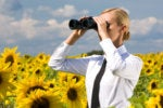 businesswoman with binoculars in sunflower field vision future predictions