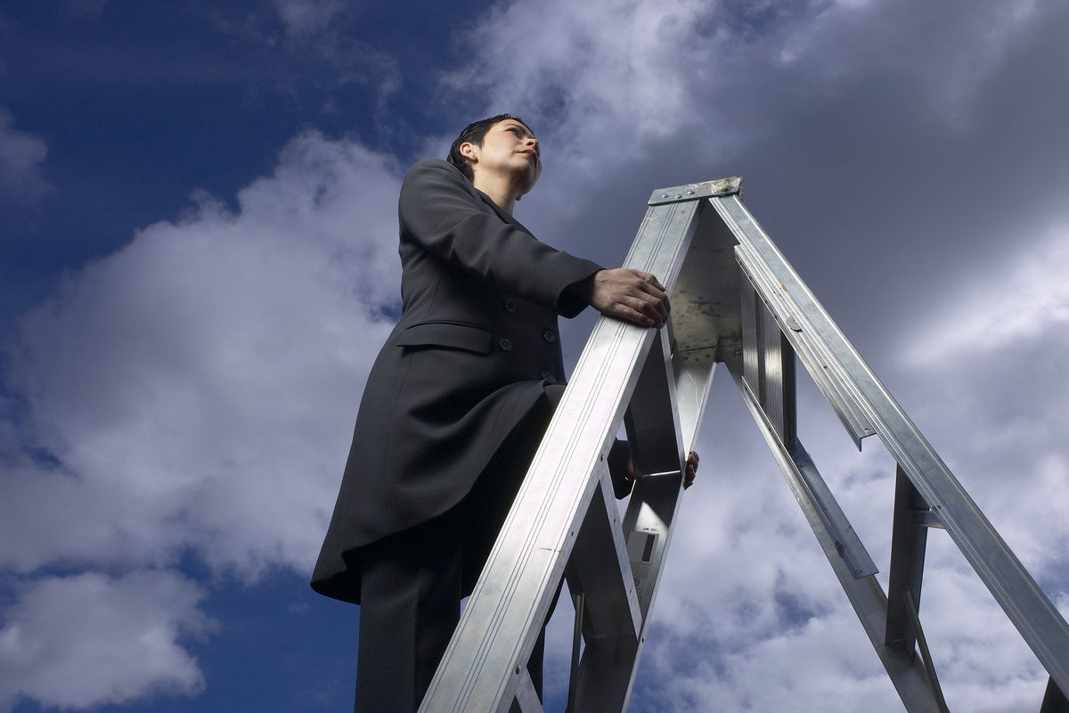 climb ladder businesswoman career