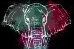 elephant big data analytics hadoop
