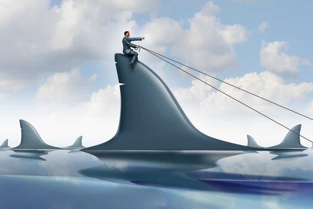 shark risk dominate navigate lead danger