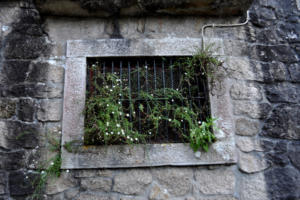 stone wall and window