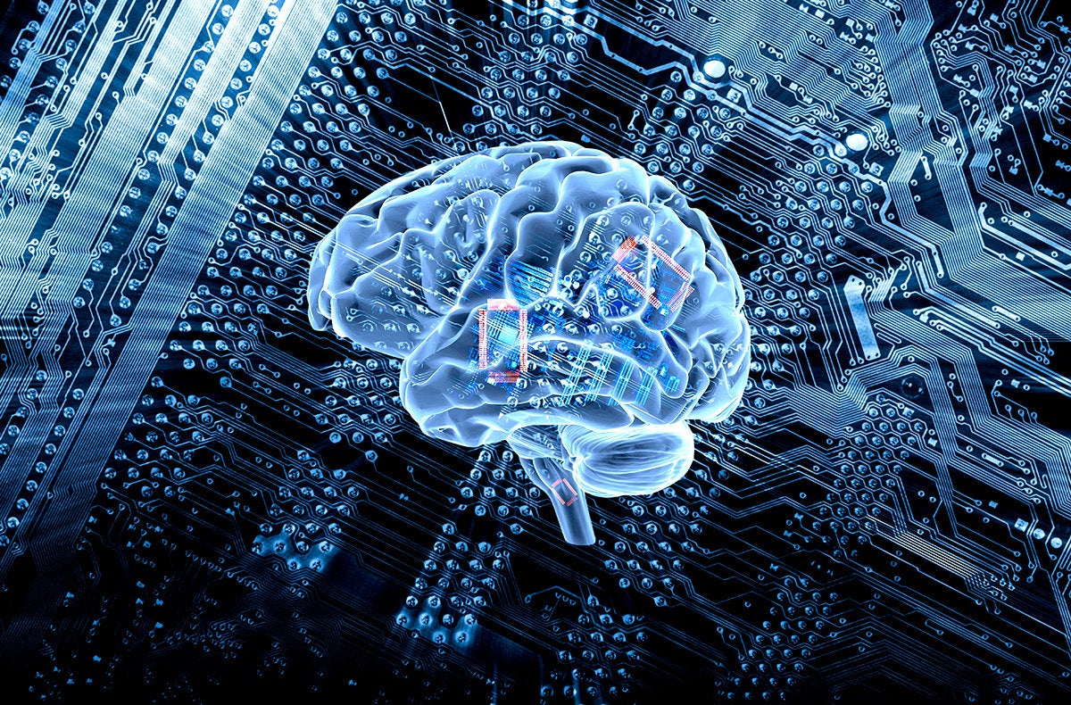 a digital brain and circuit board