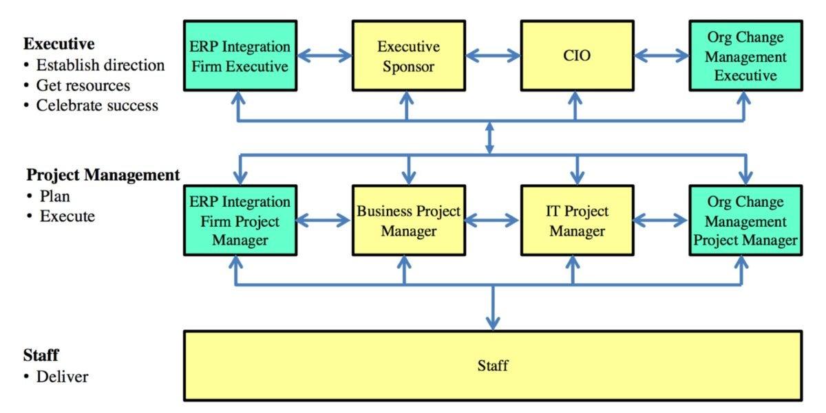 ERP team organization