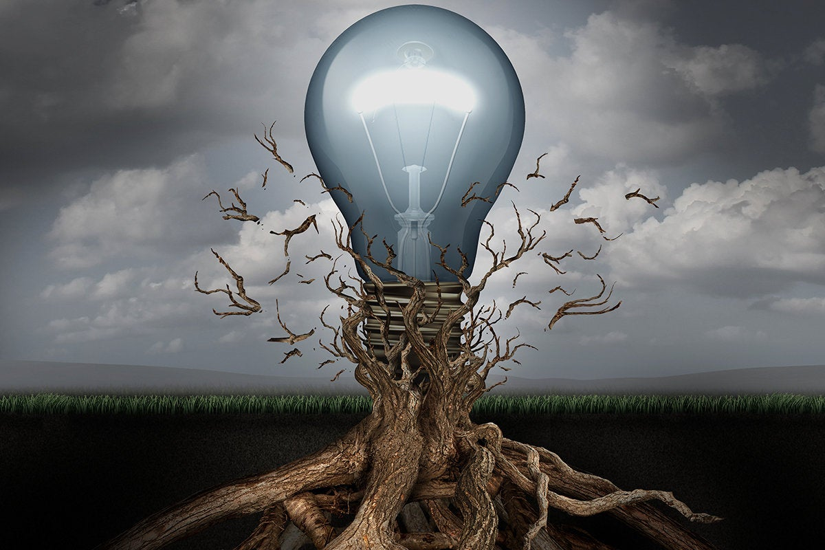 lightbulb tree - new ideas - emerging technology
