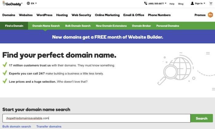 Domain Registration page on GoDaddy.com