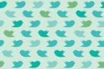 Twitter birds social media pattern