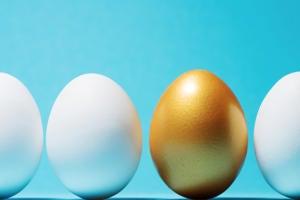 leadership golden egg unique singled out