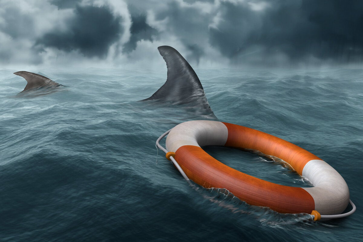 risk shark attack stormy seas life preserver rescue