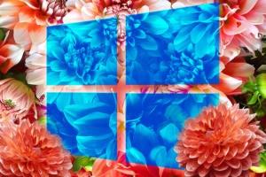 Windows 10 version 2004: Key enterprise features