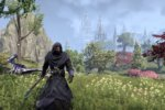 The Elder Scrolls Online's Summerset expansion doesn't shy from the dark sides of elves