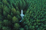 Out of place, in the middle of nowhere: a jet airplane in a dense forest