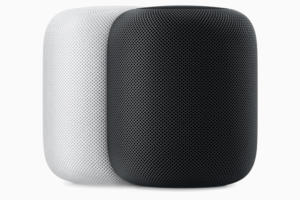 apple homepod wht blk