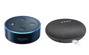 echo dot and home mini