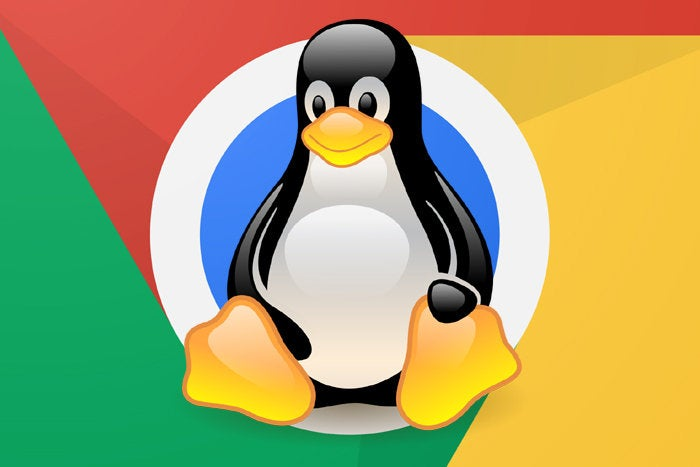 Linux Apps Chromebooks