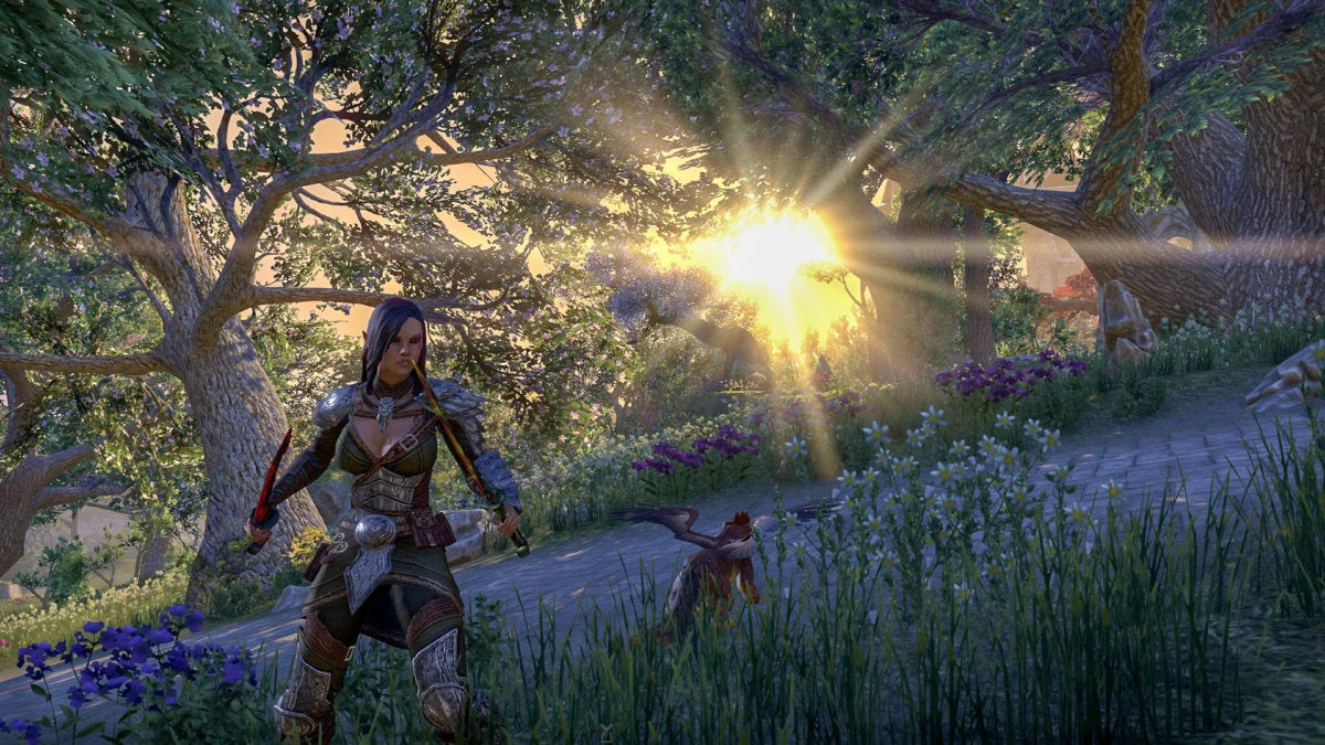 The Elder Scrolls Online: Summerset review: Don't leave this elf on