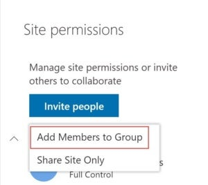 add group members from team site