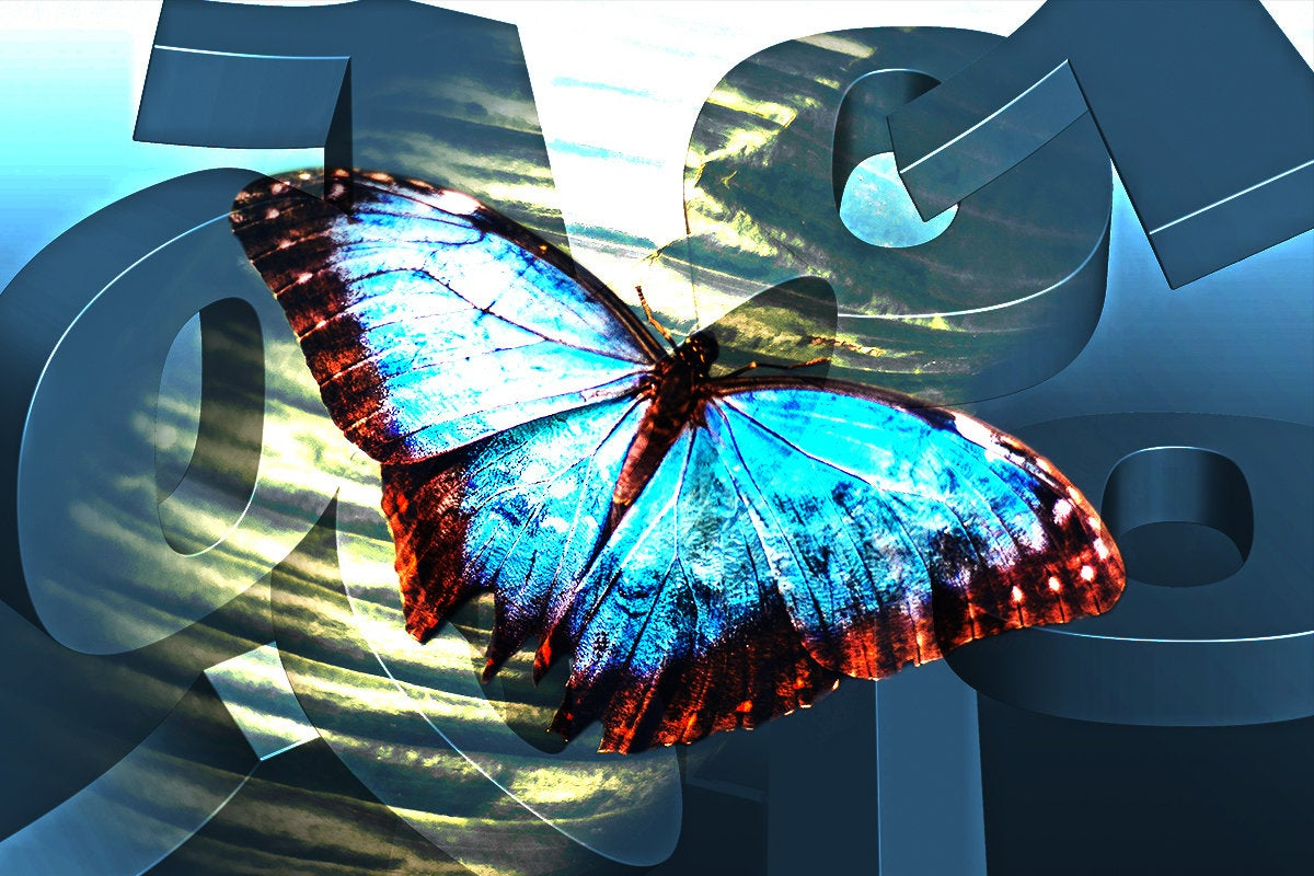 digital transformation / butterfly in an abstract binary environment