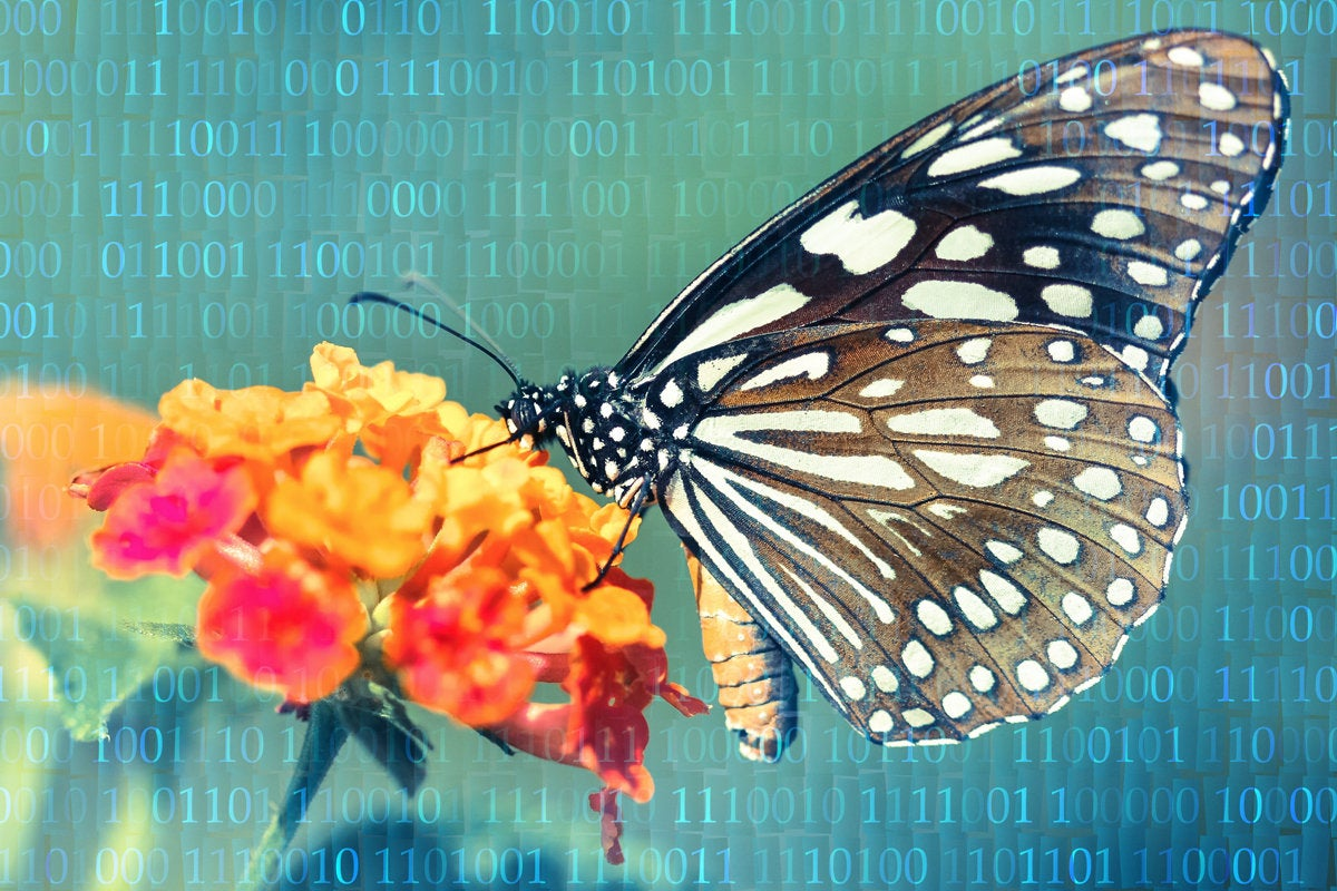 digital transformation, digital learning, digital literacy, CIO