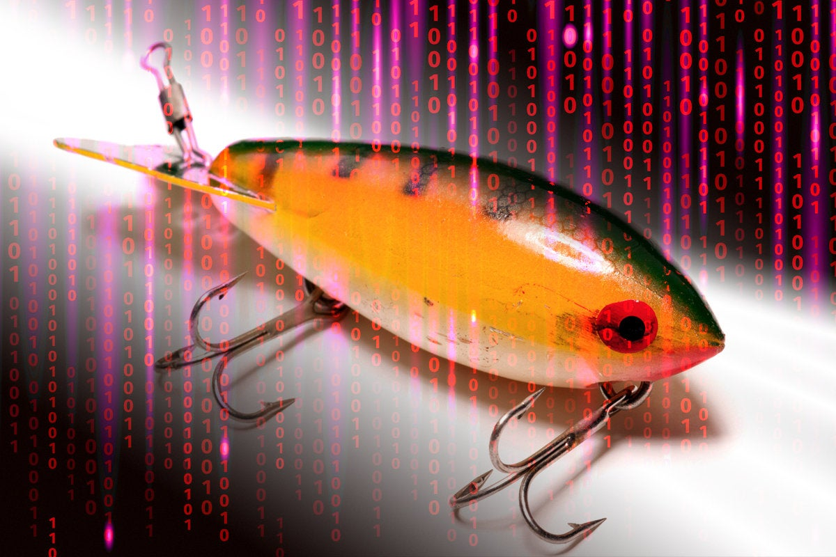 phishing fishing lure bait binary hack security breach