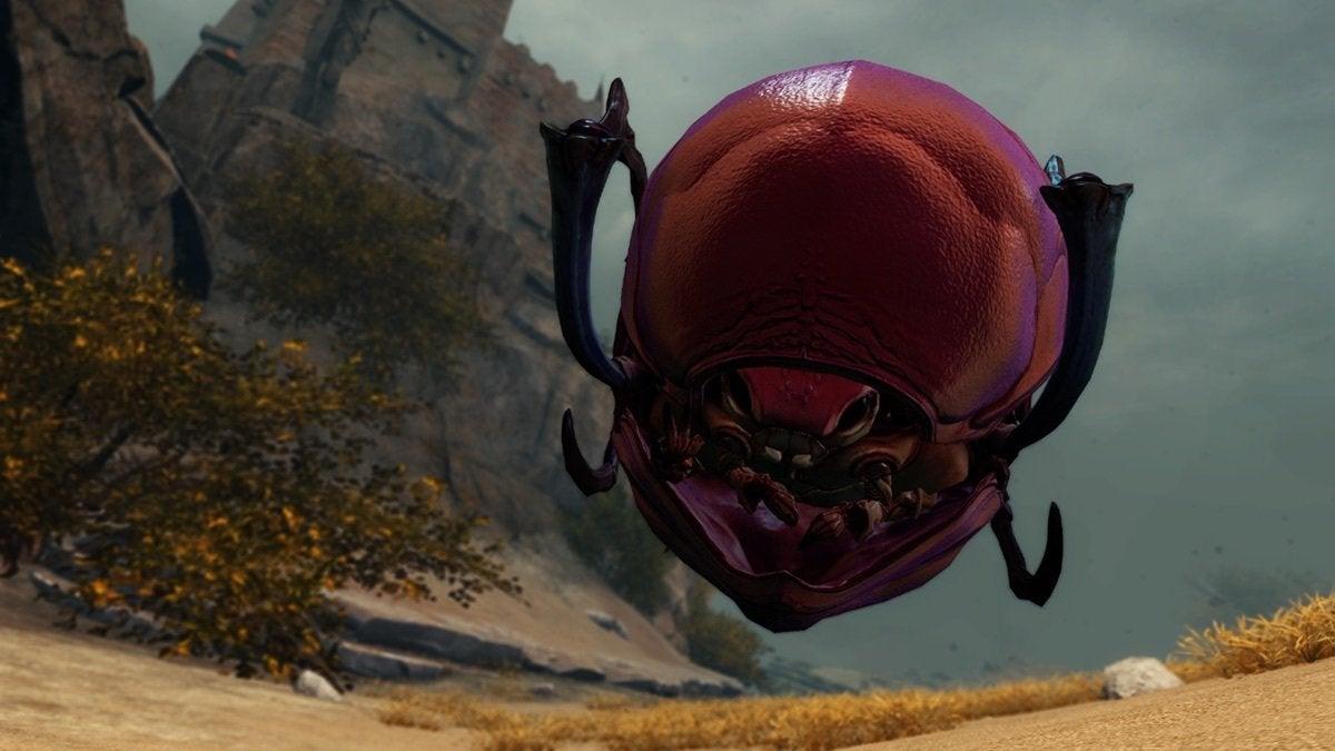 rollerbeetle3