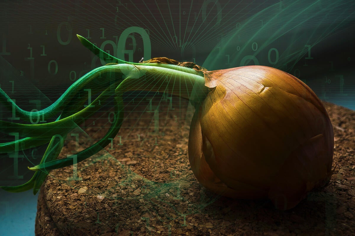 What is the Tor Browser? How it protects your identity online