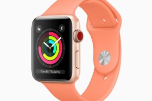 apple watch activity rings