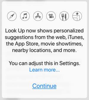 ios look up settings