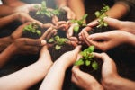 succession planning grow nurture cultivate share hands diversity collaboration