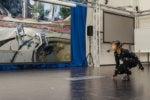 How next-gen motion capture will supercharge VR arcades
