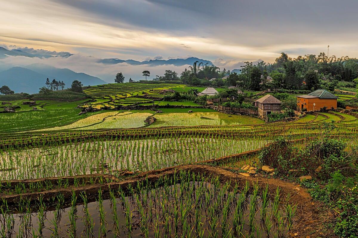 Village of Y Ty rice terraces, Vietnam, Southeast Asia