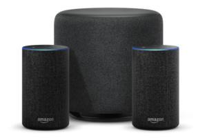 echo sub with echo speakers