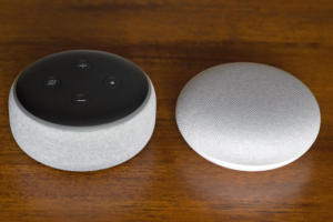 echo dot vs google home mini