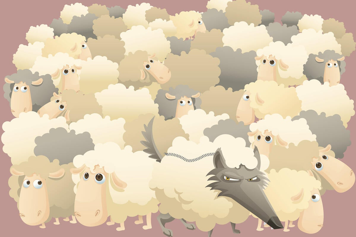 Oracle's Cloud Programs: Beware a Wolf in Sheep's Clothing