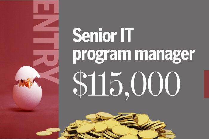 2018 entry 3 senior it program manager